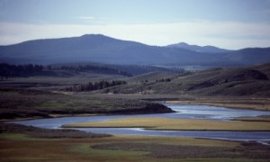 2892_355_Hayden_Valley_Yellowstone_md