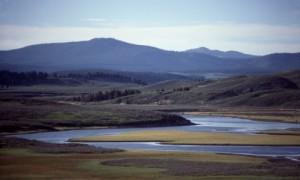 2892_355_Hayden_Valley_Yellowstone_md